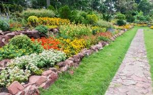 landscaped-yard